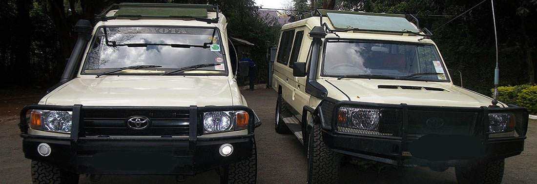 Safari Landcruisers @ $200